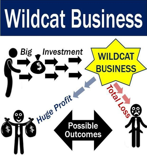 Wildcat business - definition and meaning - Market Business News
