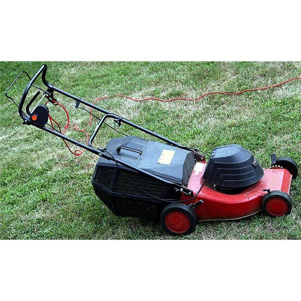 Tips on Starting a Lawn Mowing Business for Teens