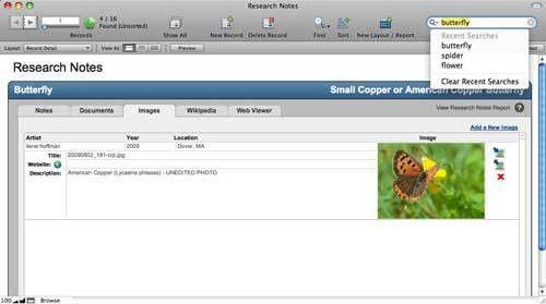 Review - FileMaker Pro 11 - (Mar 19)   MacNN