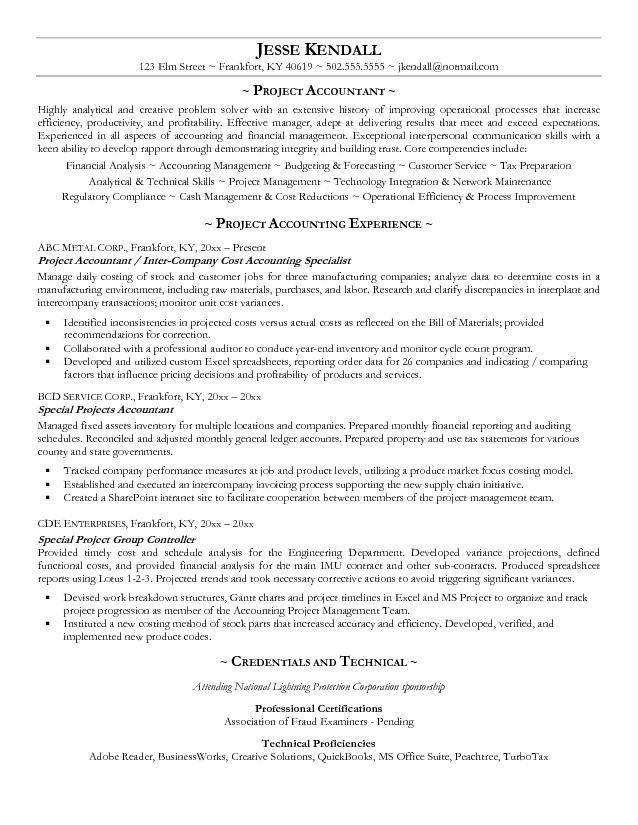 Free Project Accountant Resume Example