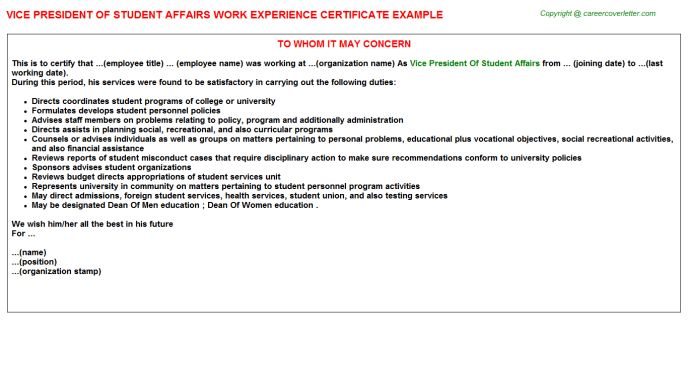Director Of Student Affairs Work Experience Letters
