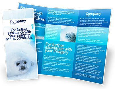 Free Microsoft Word Brochure Templates Download