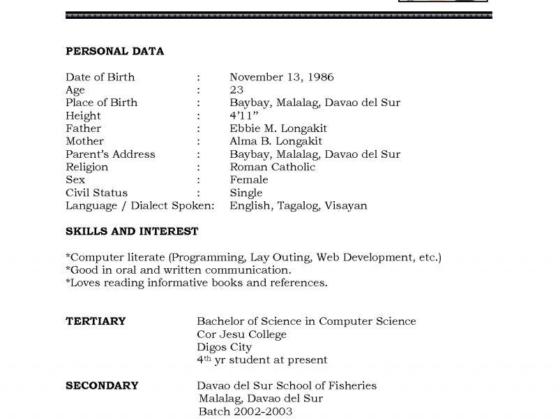 resume bio example resume example