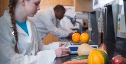 30 Best Value Food Science Degrees - College Values Online