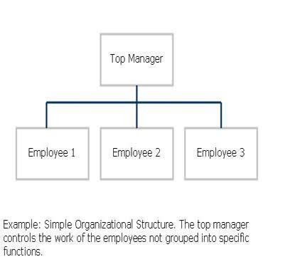 Simple_Organizational_Structure.jpg