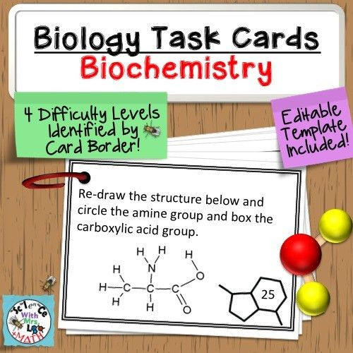 Task Cards: Biochemistry 60 Task Cards - Monomers, Polymers ...