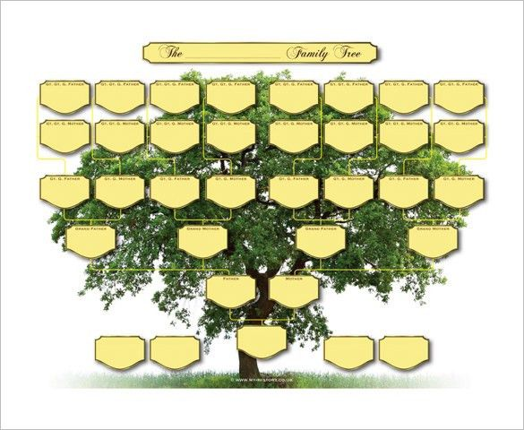 5 Generation Family Tree Template – 10+ Free Sample, Example ...
