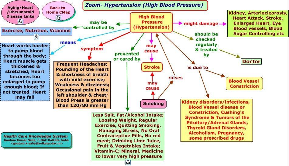 hypertension concept map hemodynamics concept map nursing concept ...