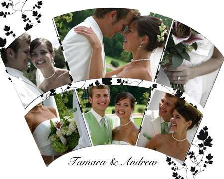 WEDDING ALBUM PHOTOSHOP MULTILAYERED TEMPLATES VOL 1-4 | eBay