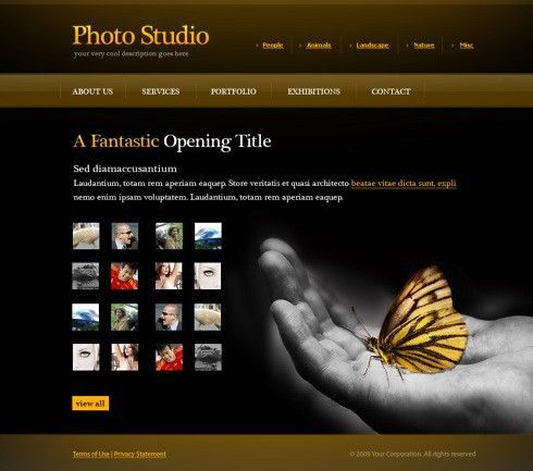 Photo Gallery Web Template - 6072 - Art & Photography - Website ...
