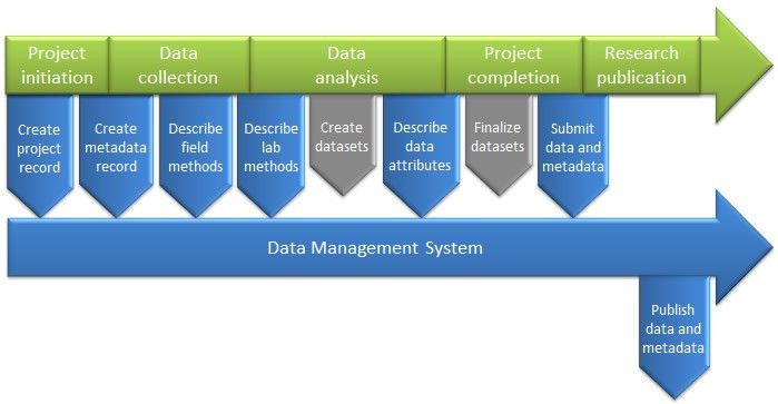 Data management plans | Research Administration