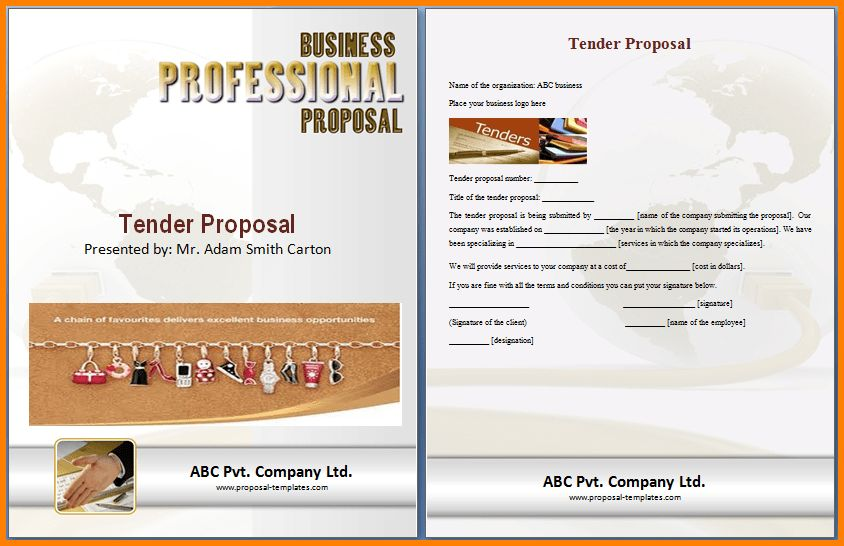 10+ format of a tender proposal | Proposal Template 2017