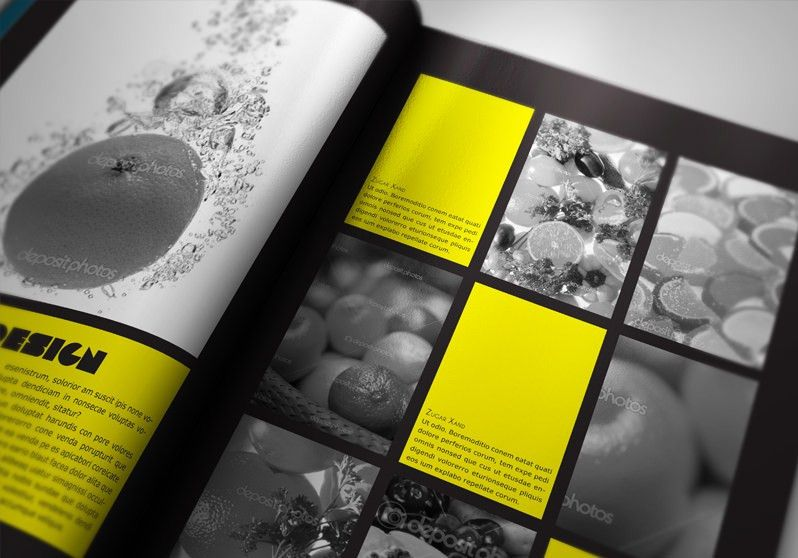 Portfolio Book Presenter | StockInDesign