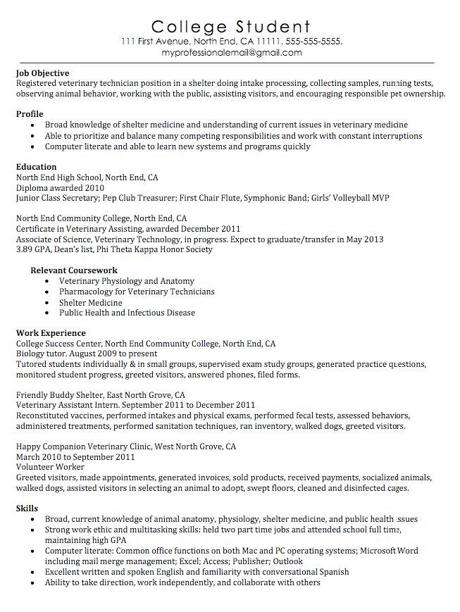 veterinary technician resume examples veterinary technician