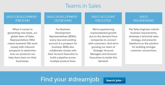 4 Most Common Roles in Software Sales Jobs - CareerDreaming / The ...