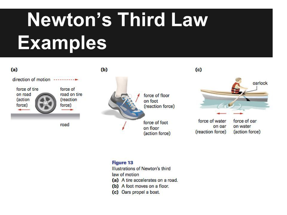 Newton's Laws of Motion. Newton's First Law If the external net ...