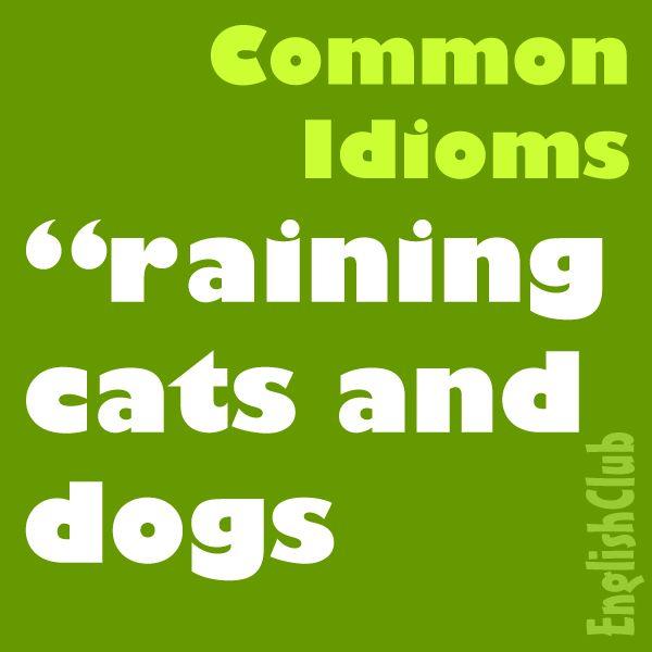 Common Idioms | English Club