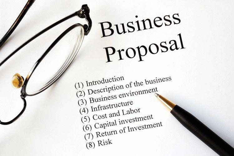 Business Proposal Sample and Outline - Mr Minds