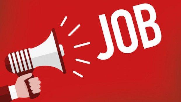 How to Write an Online Job Posting : online job posting, job ...