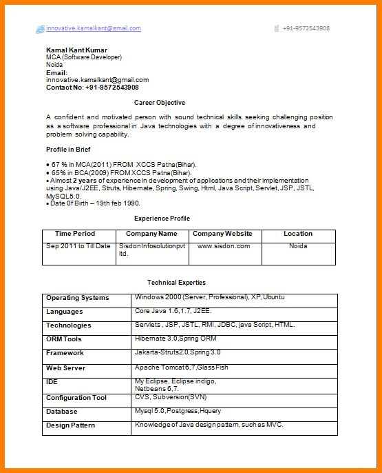 4+ resume format for experienced person | inventory count sheet
