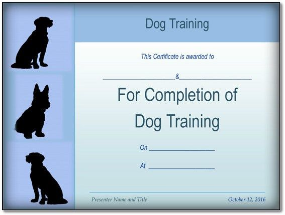 Basic Dog Training Certificate Template {PPT - PDF} Formats