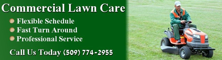 Lawn Care Spokane - Call Us Today At (509) 774-2955