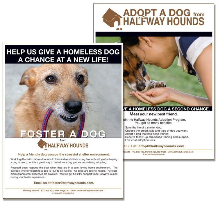Halfway Hounds Foster and Adoption Flyers - Rapunzel Creative