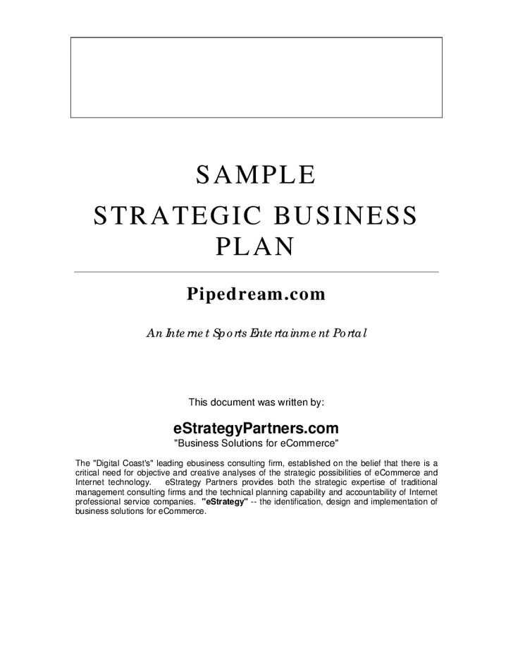 Sample Strategic Business Plan - Hashdoc