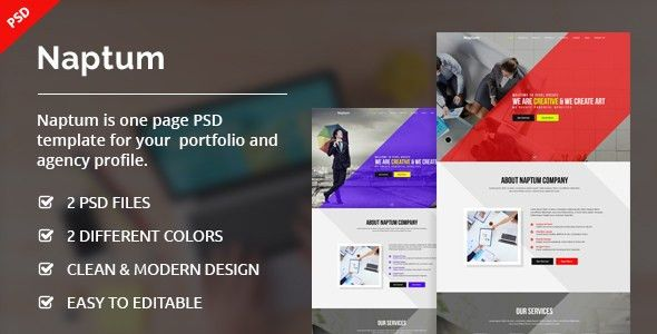 Naptum - One Page Parallax PSD Template by ecreativesol | ThemeForest