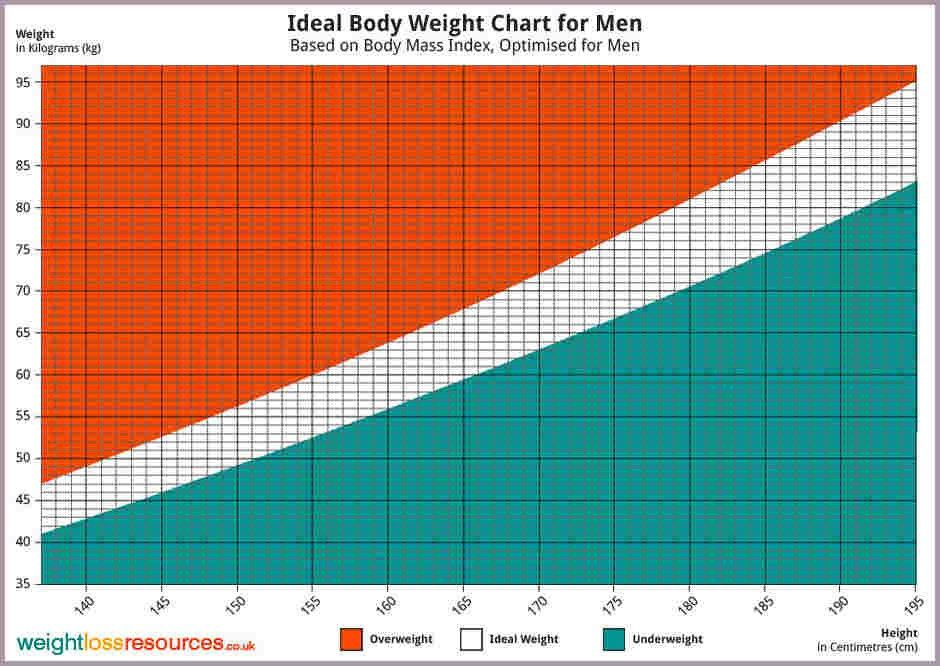 Men's Bmi Chart.ideal Weight Metric Men.jpg - sample bios