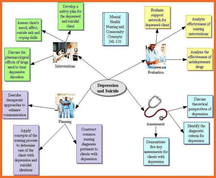 nursing concept map | sop example