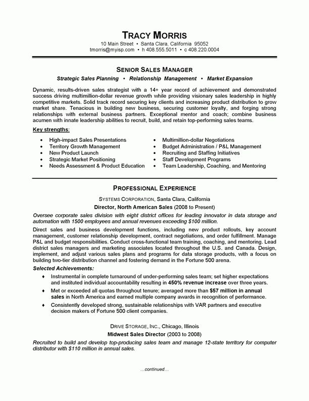 sales job resume sample professional summary on resume examples ...