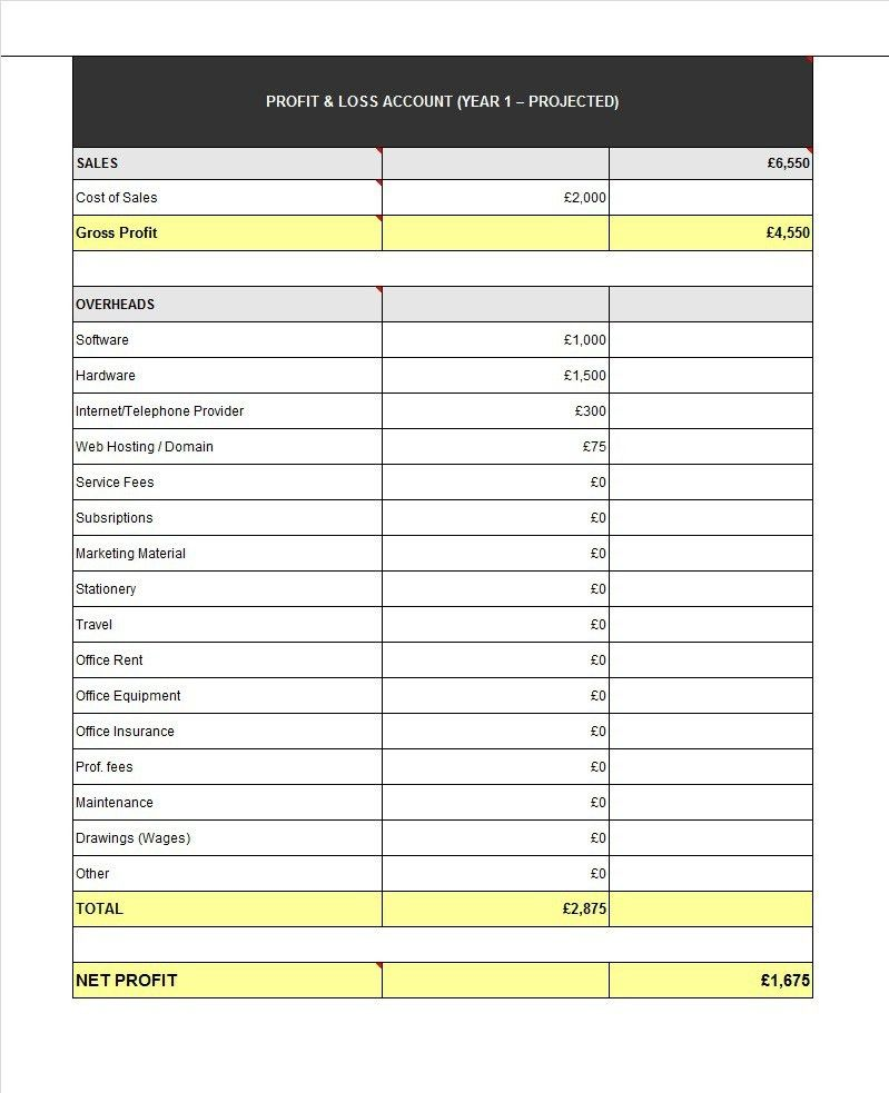 Profit And Loss Statement For Self Employed Template [Template ...