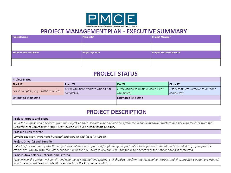 Executive Summary. Template Of Executive Summary ...