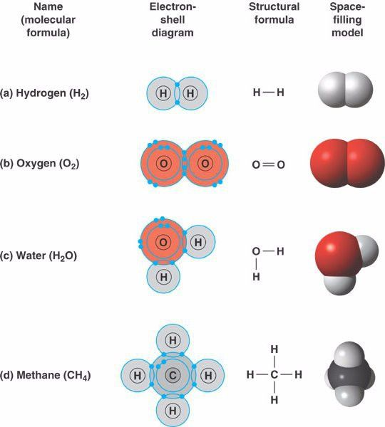 Polar covalent bond example - knqehsd