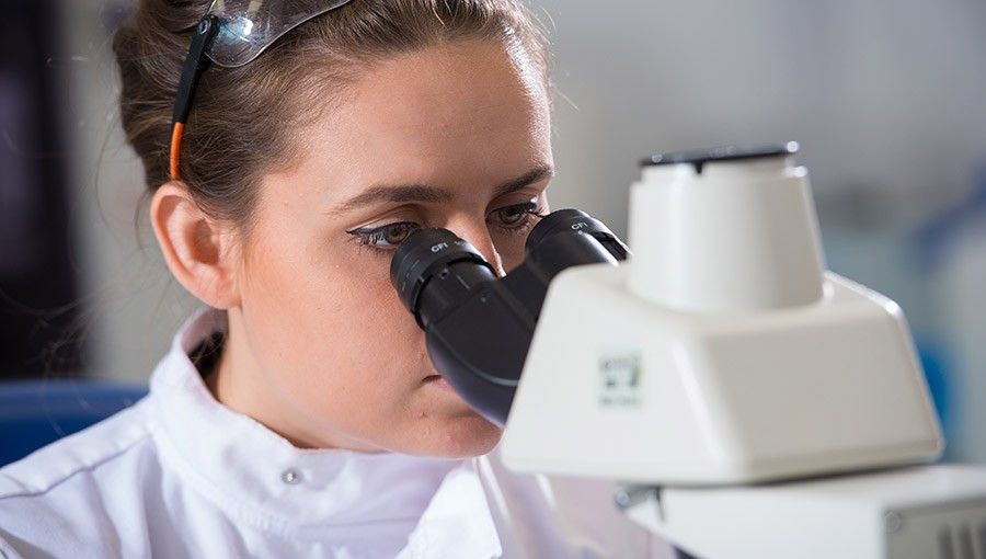Research Pathology | University of Surrey Veterinary Pathology ...