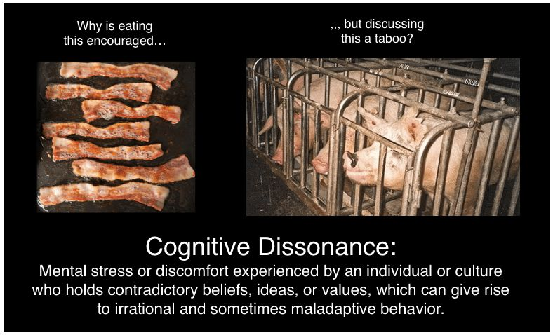 Commercials and Deliberate Cognitive Dissonance In Regards To ...