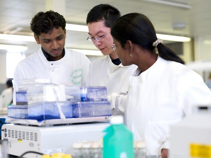 What a degree in Biochemistry could mean for your future | Job ...