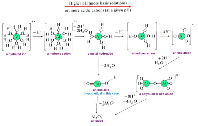 Predicting Degree of Hydrolysis