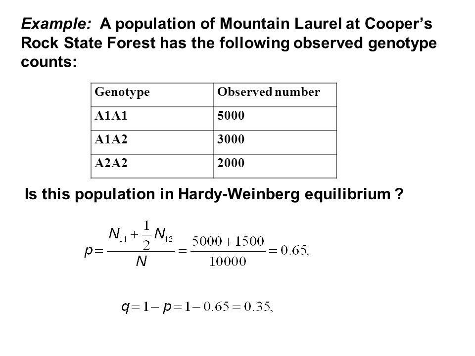 HARDY-WEINBERG EQUILIBRIUM - ppt video online download