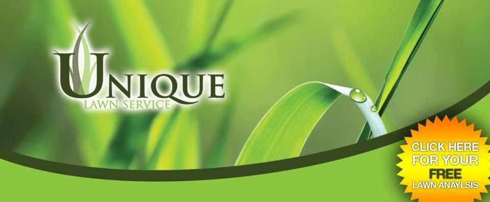 Unique Lawn Service   #1 Greensboro Lawncare Company