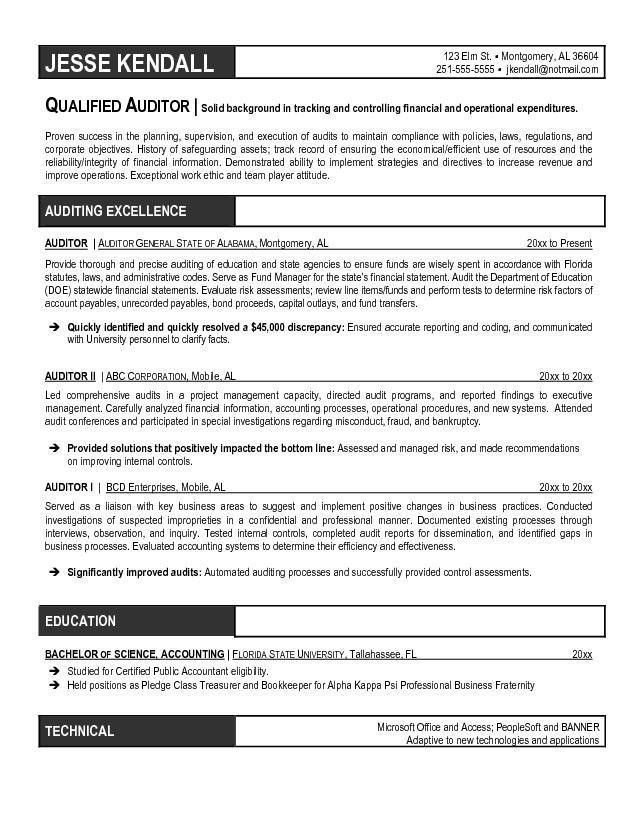 Free Auditor Resume Example