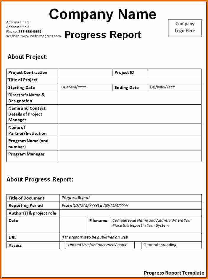 8+ Daily Progress Report Template | Expense Report