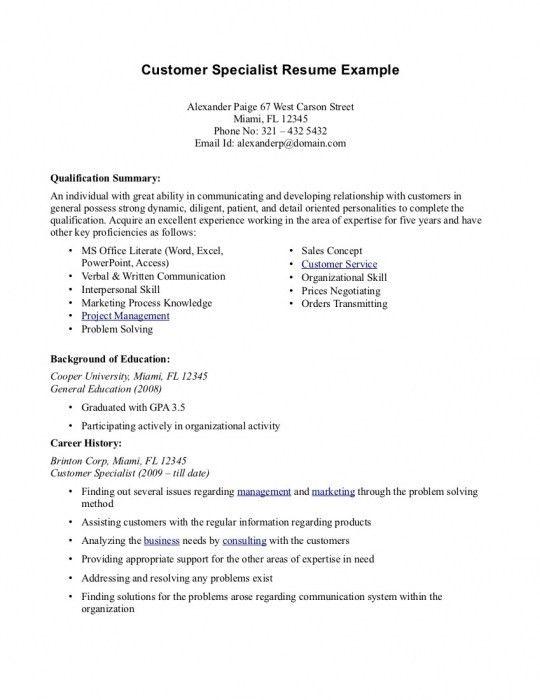 The Amazing Resume Summary Customer Service | Resume Format Web