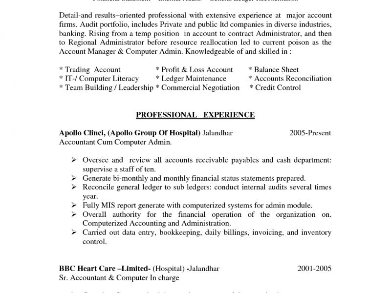 account administrator sample resume professional accounts