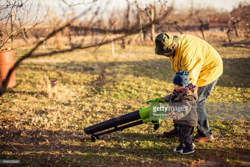 Lawn Cleaning Stock Photo | Getty Images