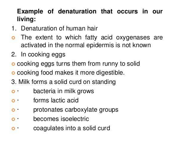B.Sc. Biochem II Biomolecule I U 3.2 Classification of Protein & Dena…