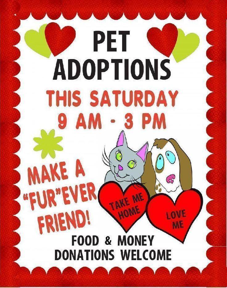 Make a Pet Shop Business Poster | Pet Adoptions Poster Ideas ...