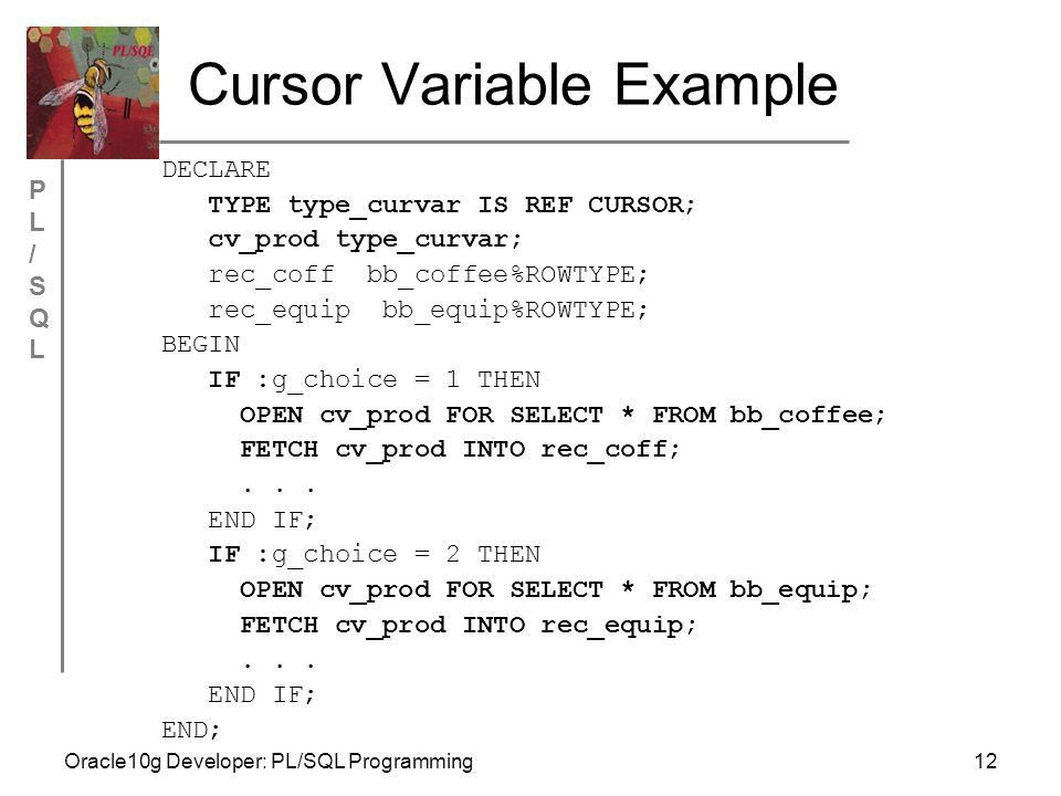 Chapter 4 Cursors and Exception Handling Oracle10g Developer ...