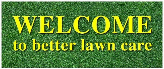 Lawn Care, Yard Care, Tree and Shrub Care | Lawn Solutions Inc